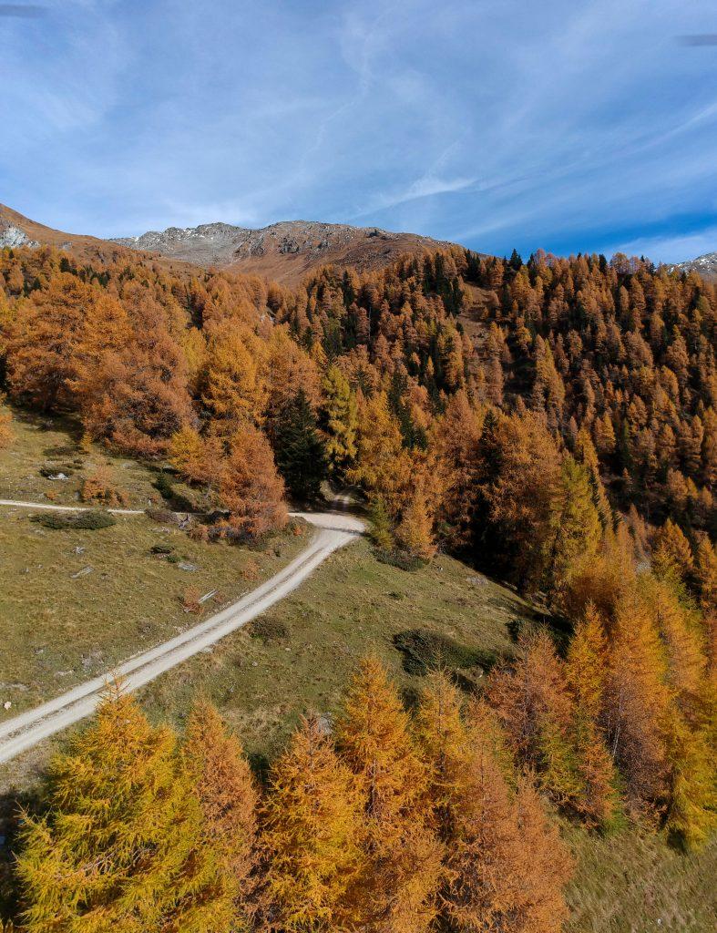 Herbstliche Stimmung im Ködnitztal, Foto: Sabine Hechenberger