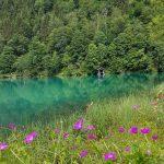 Glasklares, grünes Wasser im Klammsee; Foto: Sabine Hechenberger