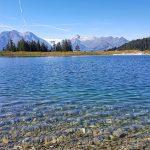 Glasklarer Wasser im Speicherteich, Foto: Sabine Hechenberger