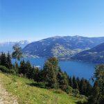 Von hier oben sieht man perfekt auf den Zeller See, Foto: Sabine Hechenberger