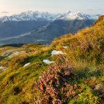 Ausblicke auf das Kitzsteinhorn, Foto: Sabine Hechenberger