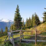Wanderweg entlang des Pinzgauer Spazierweges, Foto: Sabine Hechenberger