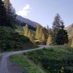 Die schöne Forststraße schlängelt sich durch das Rattensbachtal, Foto: Sabine Hechenberger