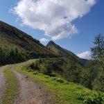 Hier sieht man vorne schon das Gipfelkreuz Gämskragen, Foto: Sabine Hechenberger