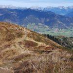 Wanderweg am Alexander-Enzinger-Weg, Foto: Sabine Hechenberger