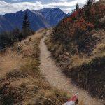 Gut markierte Wanderwege am Maiskogel, Foto: Sabine Hechenberger