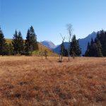 Tolle Ausblicke auf die umliegenden Berge in Mittersill, Foto: Sabine Hechenberger