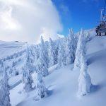 Winterlandschaft auf der Sonnalmseite im Skigebiet Schmittenhöhe, Foto: Sabine Hechenberger