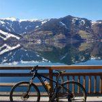 Radtour beim Zeller See, Foto: Sabine Hechenberger