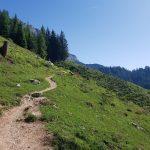 Schöner Wanderweg zur Lettlkaser Alm, Foto: Sabine Hechenberger