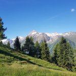 Ausblick auf das Kitzsteinhorn, Foto: Sabine Hechenberger