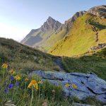 Den Gipfel Pihapper bereits im Blick, Foto: Sabine Hechenberger