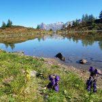 Zunigsee in Matrei in Osttirol, Foto: Sabine Hechenberger