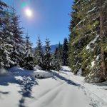Winterlandschaft in Viehhofen, Foto: Sabine Hechenberger