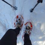Schneeschuhwandern in Viehhofen, Foto: Sabine Hechenberger
