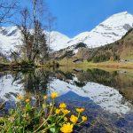 Kleiner Teich in Ferleiten, Foto: Sabine Hechenberger