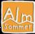 Logo Almsommer SalzburgerLand