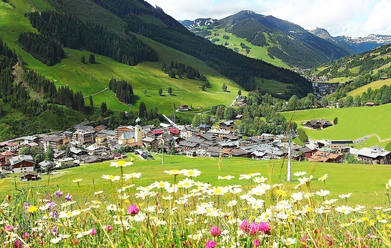 Bunte Blumenwiese im Urlaubsort Saalbach