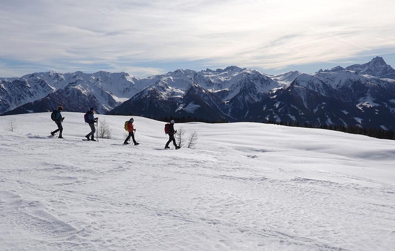 Gruppe beim Schneeschuhwandern