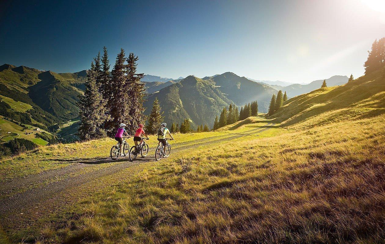 Zwei Mountainbiker fahren dem Sonnenuntergang entgegen