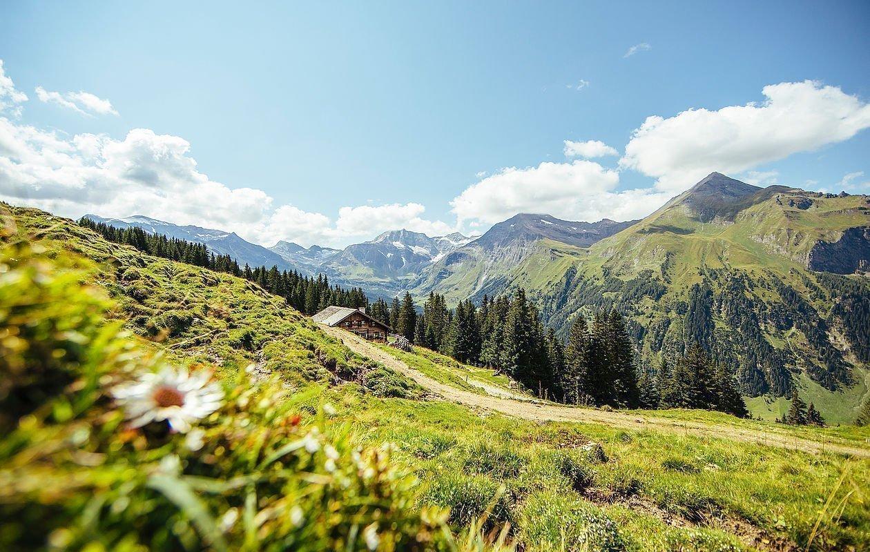 Urige Berghütte mitten in der Rauriser Bergwelt