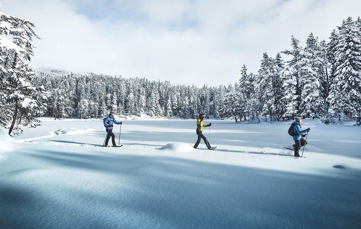 Schneeschuhtour in Seefeld - AlpenParks Alpina Seefeld