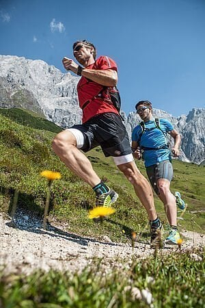 [Translate to English:] Trailrunning in den Alpen - AlpenParks Mühlbach